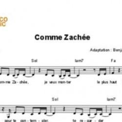 Comme Zachée - Regis Danese