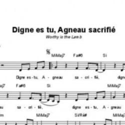 Digne es-tu Agneau sacrifié - Brian Johnson