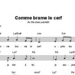 Comme brame le cerf - Martin Nystrom